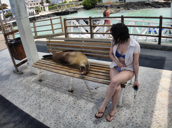 sitting with a sea lion