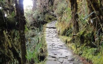 Hiking The Inca Trail to Machu Picchu – Peru