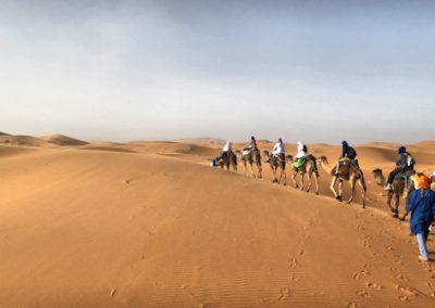 desert trek into sahara