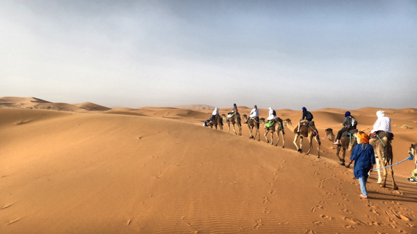 How to Plan a Camel Trek in the Sahara Desert of Morocco