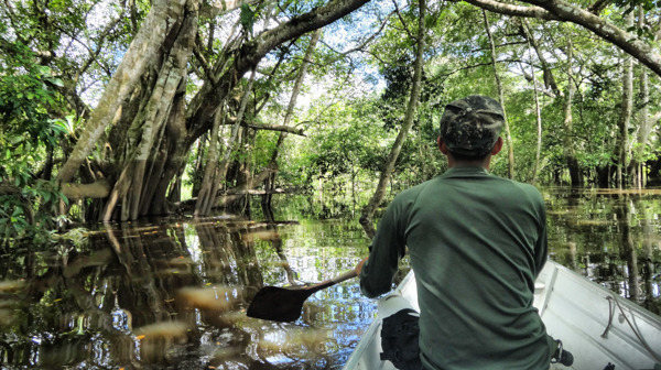 The Amazon Rainforest – From Leticia, Colombia